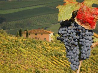 Finanziamenti Regione Toscana